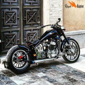 Regal Raptor & Chopper